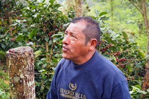 Carlos Lopez Coffee Farm
