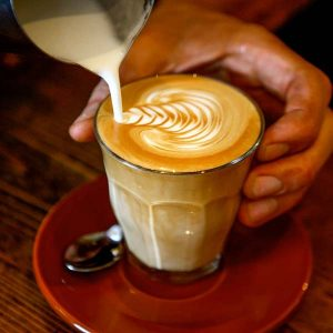 Campos Coffee Rosetta
